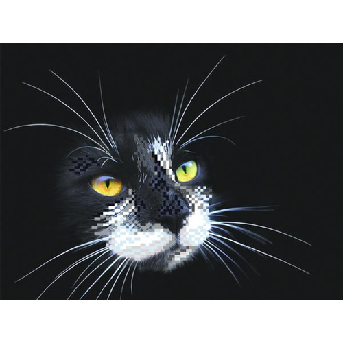 """Канва/ткань с нанесенным рисунком Матрёнин посад """"Черный кот"""""""