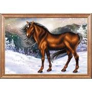 """Канва/ткань с нанесенным рисунком Магия канвы """"Конь на снегу"""""""