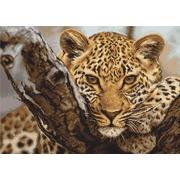 """Набор для вышивания крестом Luca-S """"Леопард"""""""