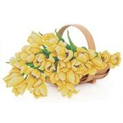 "Канва/ткань с нанесенным рисунком Конёк ""Желтые тюльпаны"""