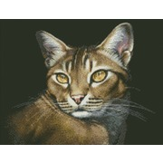 """Набор для выкладывания мозаики Паутинка """"Абиссинская кошка"""""""