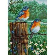 """Набор для выкладывания мозаики Вышиваем бисером """"Птички"""""""