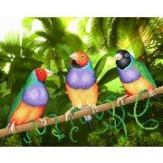 """Канва/ткань с нанесенным рисунком М.П. Студия """"Три попугая"""""""