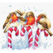 """Набор для вышивания крестом Luca-S """"Рождественские птицы"""""""