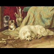 """Набор для вышивания крестом Luca-S """"Собака и Кошки"""""""