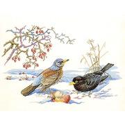 """Набор для вышивания крестом Eva Rosenstand """"Птицы и яблоко"""""""