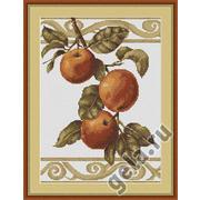 """Набор для вышивания крестом Luca-S """"Веточка яблони"""""""