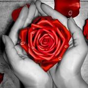 """Набор для вышивания крестом Алмазная живопись """"Роза в ладонях"""""""