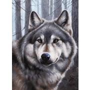 """Набор для раскрашивания Белоснежка """"Волк"""""""