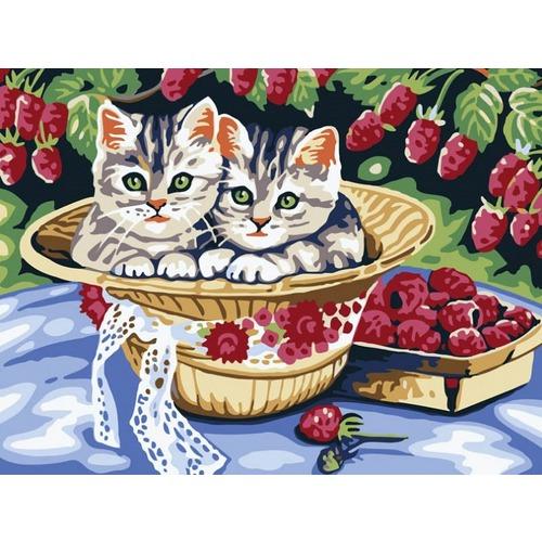 """Набор для раскрашивания Белоснежка """"Котята в саду"""""""