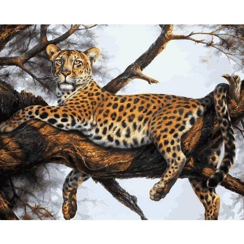 """Набор для раскрашивания Белоснежка """"Леопард на отдыхе"""""""