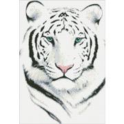 """Набор для выкладывания мозаики Паутинка """"Белый тигр"""""""