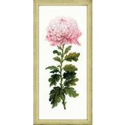 """Набор для вышивания крестом Риолис """"Нежный цветок"""""""
