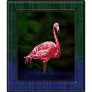 """Набор для вышивания бисером Вышиваем бисером """"Фламинго"""""""