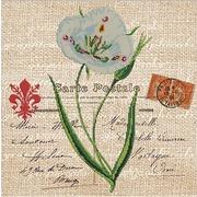 """Канва/ткань с нанесенным рисунком Глурия (Астрея) """"Нежность цветка"""""""