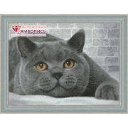 """Набор для выкладывания мозаики Алмазная живопись """"Британский кот"""""""