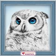 """Набор для выкладывания мозаики Алмазная живопись """"Взгляд совы"""""""